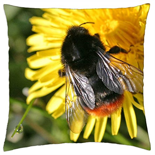 "Bombus lapidarius - Throw Pillow Cover Case (18"" x 18"")"