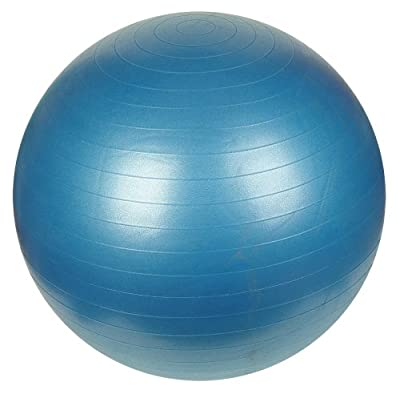Sunny Health Fitness Anti-burst Gym Ball from Sunny Distributor Inc.