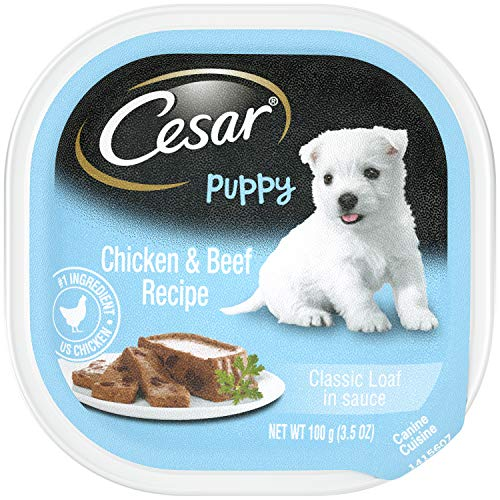 CESAR Puppy Wet Dog Food Classic Loaf in Sauce Chicken & Beef Recipe, (24) 3.5 oz Trays