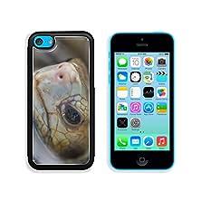 buy Msd Apple Iphone 5C Aluminum Plate Bumper Snap Case Tortoises 33423068