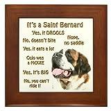Saint Bernard FAQ Framed Tile by CafePress