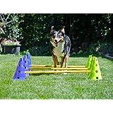 FitPAWS Kit Canine Dog Agility Gym