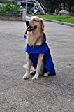 SUPEREX® Pet Dog Coat Jacket Hund costüm wasserdicht Hundepullover Hundemantel, Regenjacke Regenmantel Winterjacke Hundebekleidung Hundejacke winter Warm Wintermantel Hundemantel für kleine mittlere große Hunde (Blau, XL) -