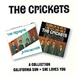 A Collection / California Sun - She Loves You The Crickets