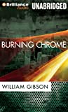 img - for Burning Chrome book / textbook / text book