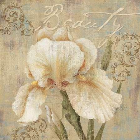 feelingathome-imprimer-sur-toile-100coton-beautz-cm48x48-affiche-reproduction-gravure