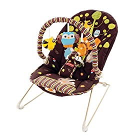 Fisher-Price Soothe n' Play Bouncer