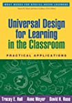 Universal Design for Learning in the...