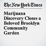 Marijuana Discovery Closes a Beloved Brooklyn Community Garden | Sarah Maslin Nir