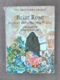 img - for Briar Rose: The Story of Sleeping Beauty (Fairy Tale Picture Books) book / textbook / text book