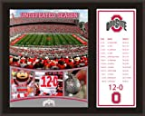 Ohio State Buckeyes Sublimated 12X15 Plaque | Details: 2012 Undefeated Season Amazon.com