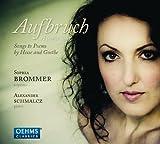 Aufbruch-目覚めよ ~ヘッセとゲーテによる歌曲集