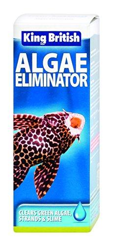 king-british-algae-eliminator-for-aquariums-100ml