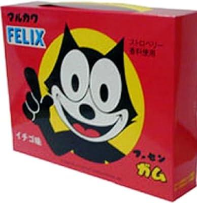 丸川製菓 ビッグボックスガム 25個×2種類