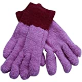 Evriholder Microfiber Dusting Gloves - Pack of 1
