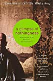 img - for A Glimpse of Nothingness: Experiences in an American Zen Community book / textbook / text book
