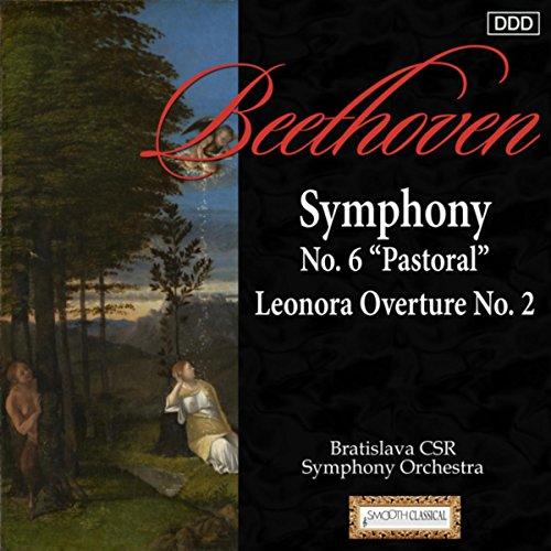 "Symphony No. 6 in F Major, Op. 68 ""Pastoral"": IV. Thunder-storm: Allegro"