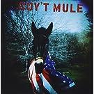 Govt Mule