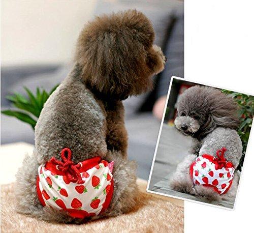 Bild: Namsan Puppy Hund Windel Physiologische Panty Pantie fuer Maedchen HundeRed Grosse Taille 1317inch
