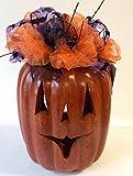 """Terra Cotta Jack-o-lantern Pumpkin Purple Indoor/outdoor 12"""""""