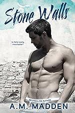 Stone Walls: Stone Walls: an FBI Romantic Suspense Novel