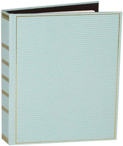 Entertaining with Caspari Lizard Loose-leaf Address Book, Robin's Egg Blue, 1-Count