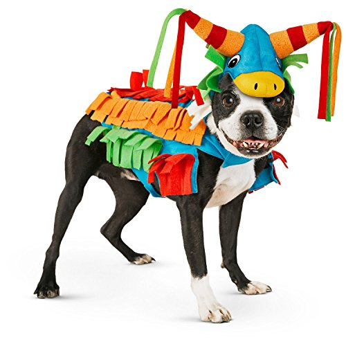 Halloween Bootique Donkey Pinata Dog Costume, Medium, Multi-Color