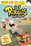 The Need for Speed (Rabbids Invasion)