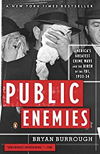 Public Enemies: America's Greatest Crime Wave And The Birth Of The Fbi, 1933-34 by Bryan Burrough ebook deal