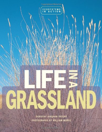 Life in a Grassland (Ecoystems in Action) PDF