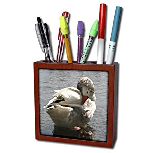 Taiche - Photography - Waterfowl - Spring Preening -river, bird, nature, wildlife, preening, waterfowl, water fowl - Tile Pen Holders-5 inch tile pen holder