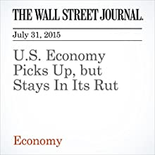 U.S. Economy Picks Up, but Stays In Its Rut (       UNABRIDGED) by Kate Davidson Narrated by Ken Borgers