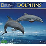 Dolphins National Geographic 2015 Wall Calendar
