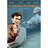 Evening Primrose ~ Anthony Perkins
