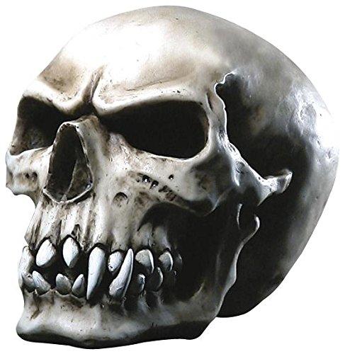 Markus Mayer Orc Skull Teschio decorativo Standard