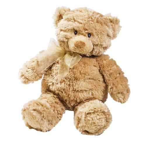 51hSCEdjB7L Summer Infant Mommies Melodies Gund Bear