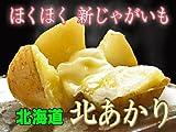 北海道 ジャガイモ 【北あかり】 Mサイズ10kg じゃがいも