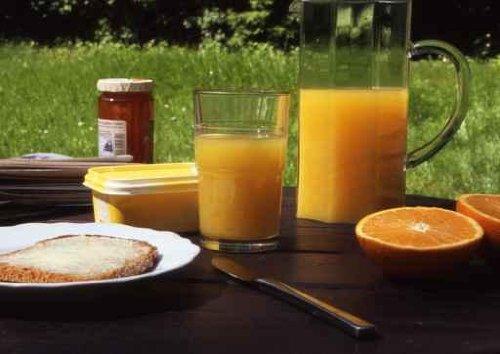 Breakfast in the Open - 36