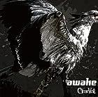 awake [TYPE A](�߸ˤ��ꡣ)