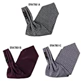 ERA7B01 Multi-colored Silk Ascot Mens Checkered Cravat Perfect Gift By Epoint