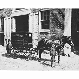 Quality digital print of a vintage photograph - Boys With Veterinary Carriage - Washington, DC 1898. Black & White 11x14 inches - Matte Finish