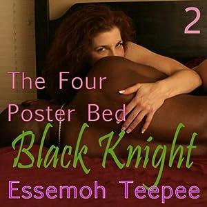 Black Knight 2 Hörbuch