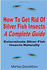 How to get rid of silver fish insects a complete guide for How to get rid of silver fish