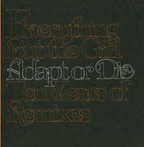 Adapt Or Die: 10 Years Of Remixes (US Release)
