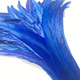 Shekyeon 12-14inch Rooster Tail Feather Use for Hats Costume Decoration Pack of 50(Royal Blue)