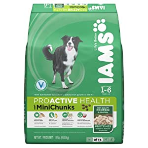 Iams ProActive Health Adult Mini Chunks Premium Dog Nutrition Food, 15-Pound