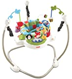 Fisher Price Jumperoo Discover and Grow Activity Center