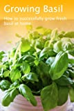 Growing Basil (Growing Herbs)