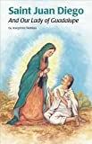 img - for Saint Juan Diego book / textbook / text book