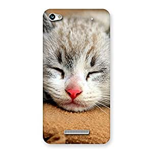 Special Sleeping Cat Multicolor Back Case Cover for Micromax Hue 2